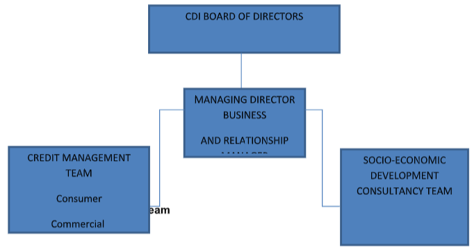 Management Structure | Consulting and Development